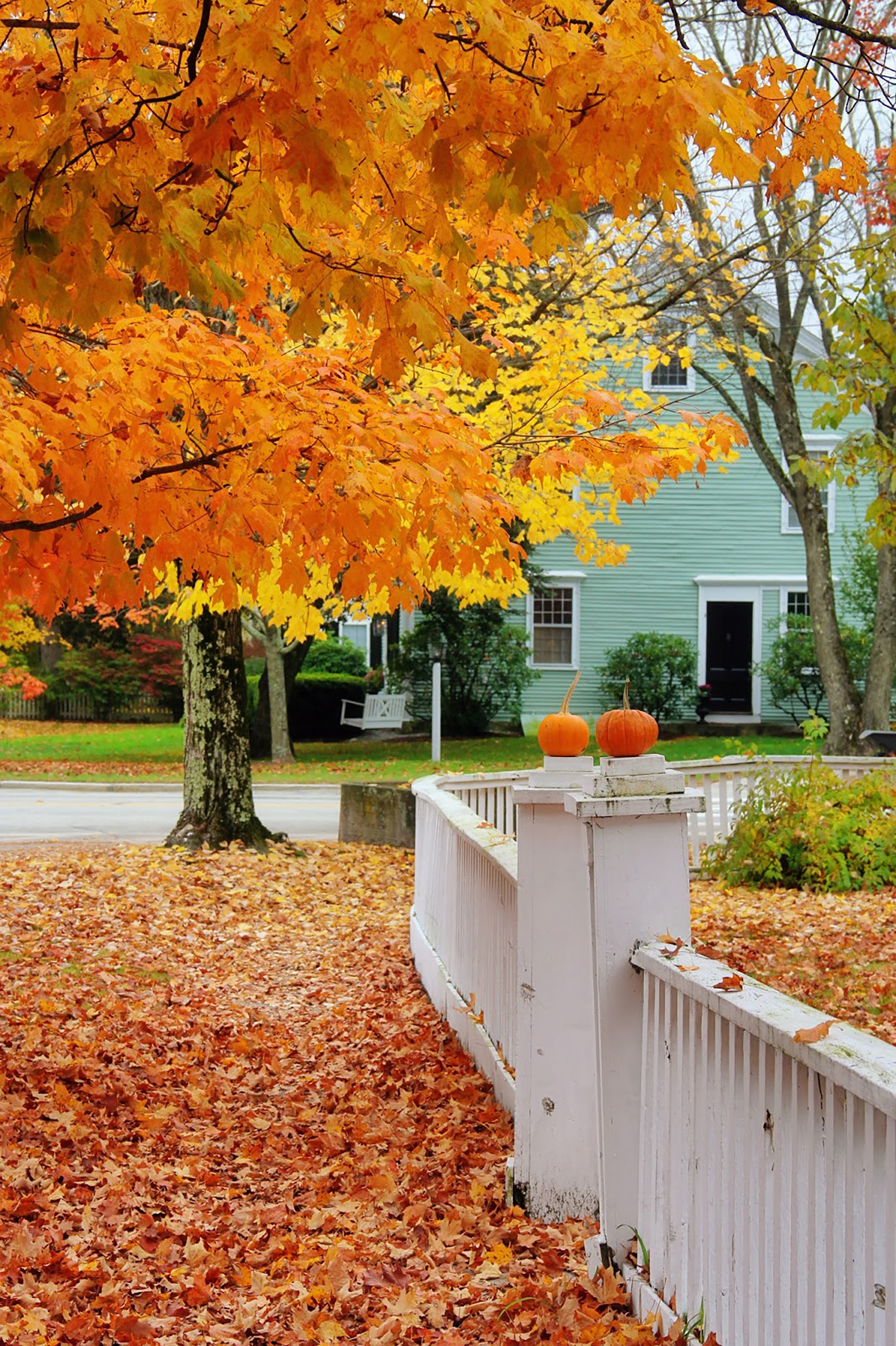 newengland_autunno